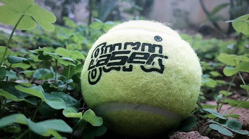 ITIA получила 38 новых сигналов о договорных матчах в теннисе