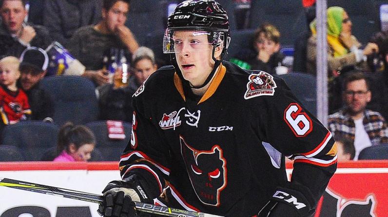 Канадский хоккеист «Нэшвилла» совершил каминг-аут